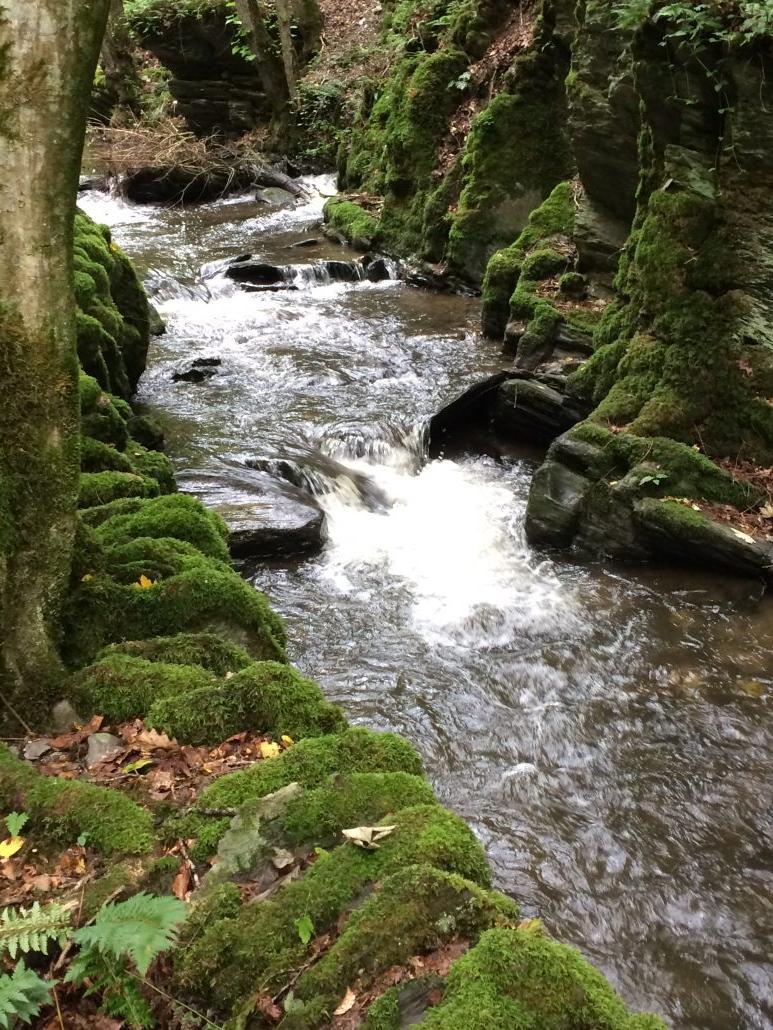 stromend water vitaliseert